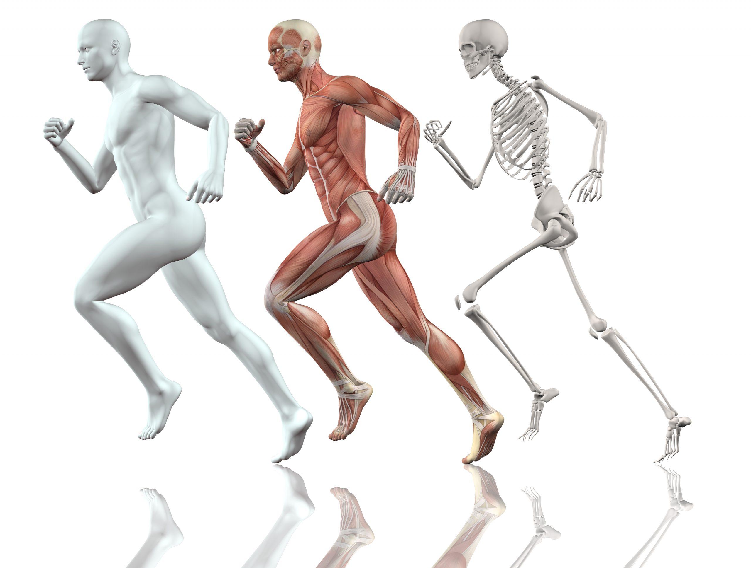 Le Pilates et la course à pied